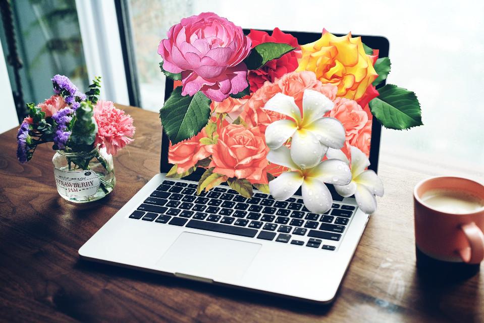 #freetoedit #flowers #surreal #remix #computer #picsart #remixit #remixed @picsart