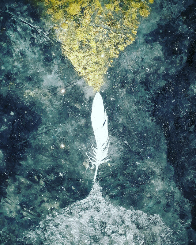 #feather #alchemy #gold #spiriruality #silver #mixedmedia #black #white #golden #art #cool #zen #artiste #artist #or #argent #contemporaryart #sculpture #artistic #painter #painting #spiritual #ancient #plume #alchemical #modernart