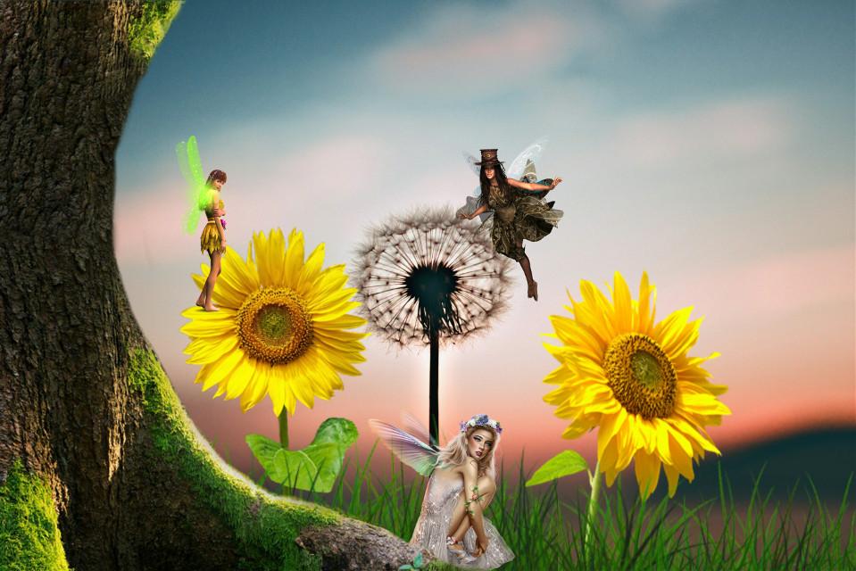 #freetoedit #dailyremix #fairies
