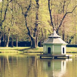lake duckhouse mirroring green park