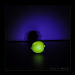 photography nightphotography longexposure stilllife limegreen