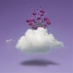freetoedit vipshoutout purple colorchange cloud