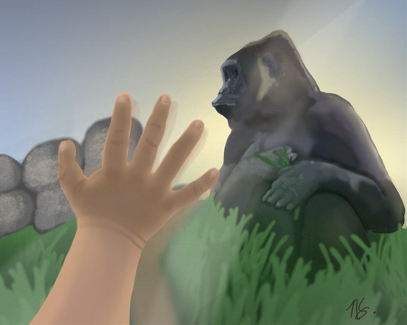 Through the window. #gorilla #child #hand #zoo  #remixit #mydrawing #dcatthezoo #freetoedit