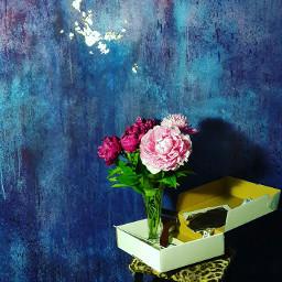 freetoedit glamorous colors rose wallpaper