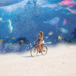 freetoedit ocean bike ircbikeronthebeach bikeronthebeach