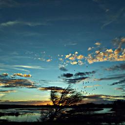 sunset silhouette california norcal stormeday pcsky