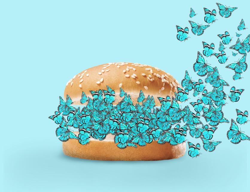 #remixit #desafio #butterfly #burguer