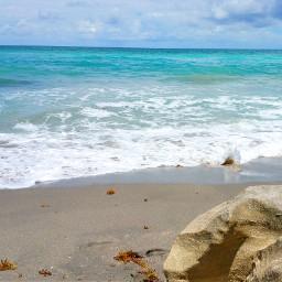 pcbeaches beaches