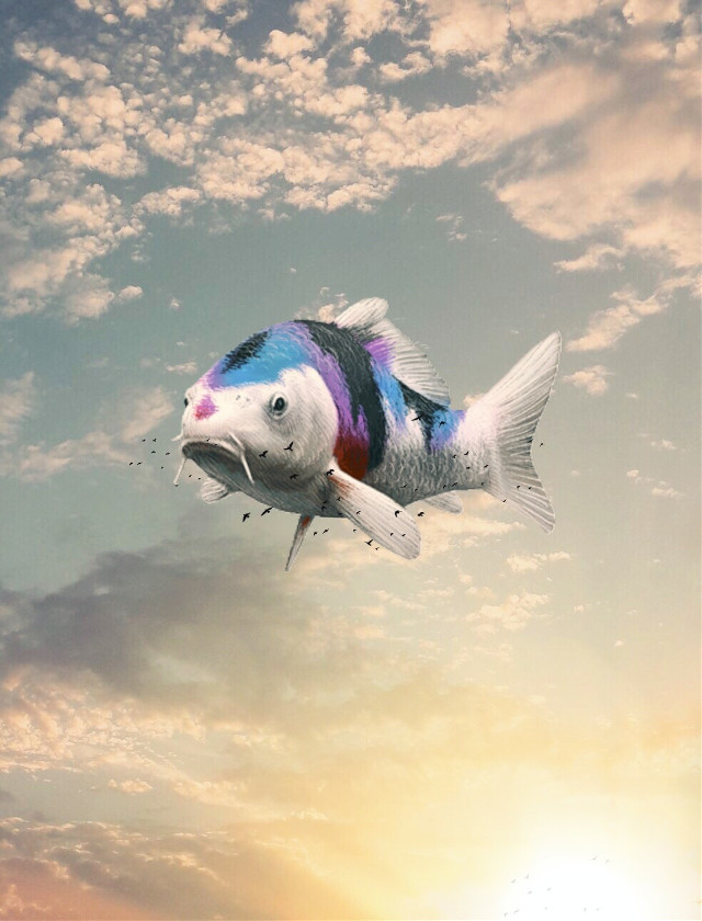 #freetoedit #fish #clouds #surreal #nature #picsart #birds