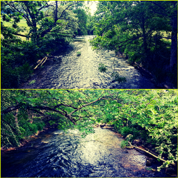freetoedit rivers trees green nature
