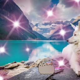 freetoedit ircdog dog