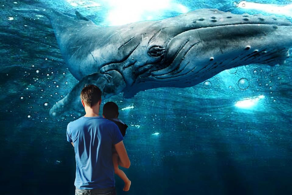 #freetoedit #edited #underwater #whale