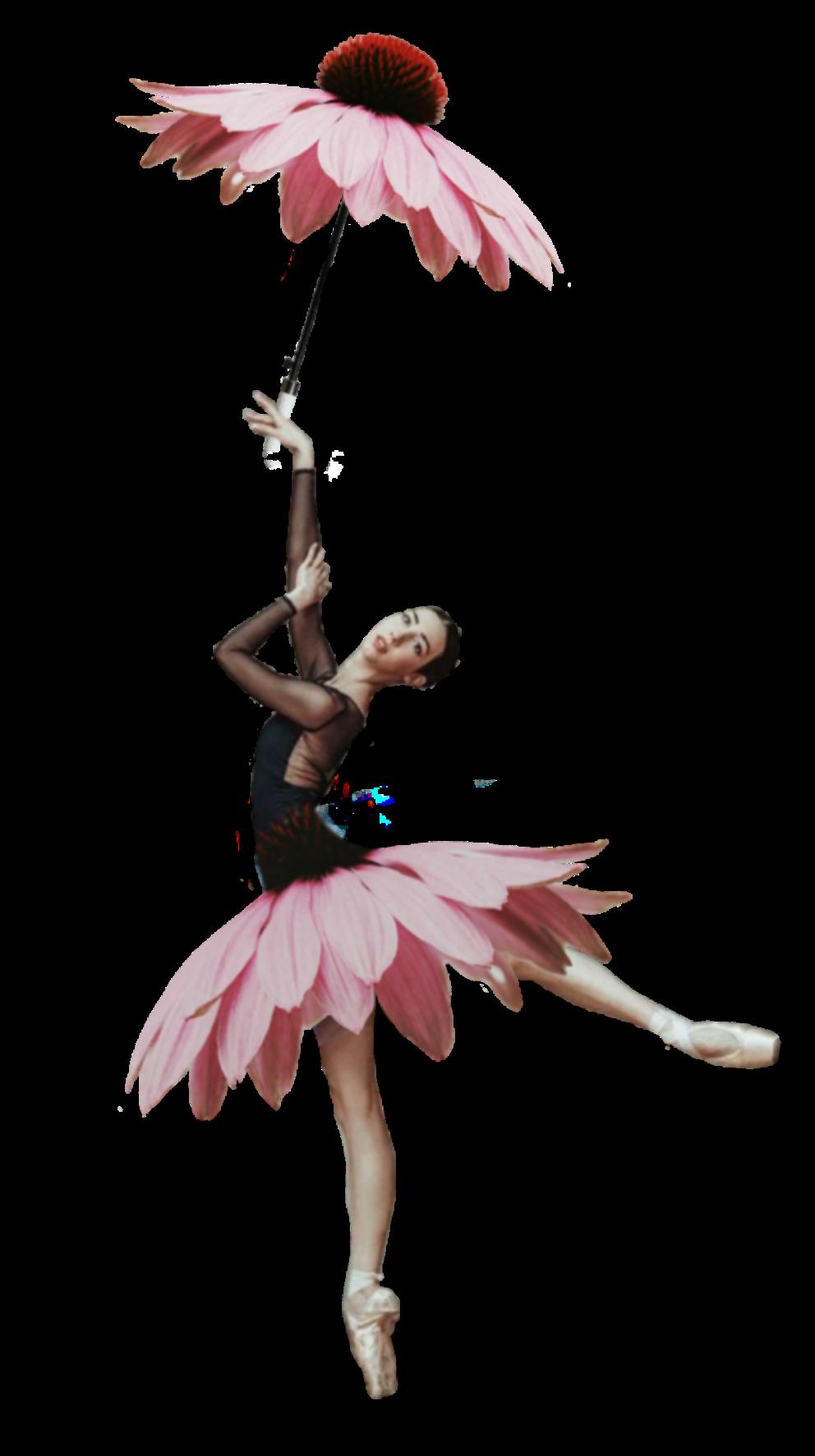 цветочные балерины картинки разводка системы