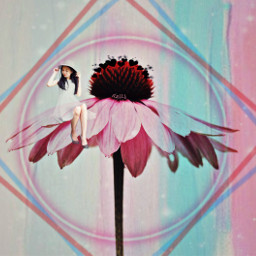 freetoedit agirl flower pink pasteleffect ircpinkflower