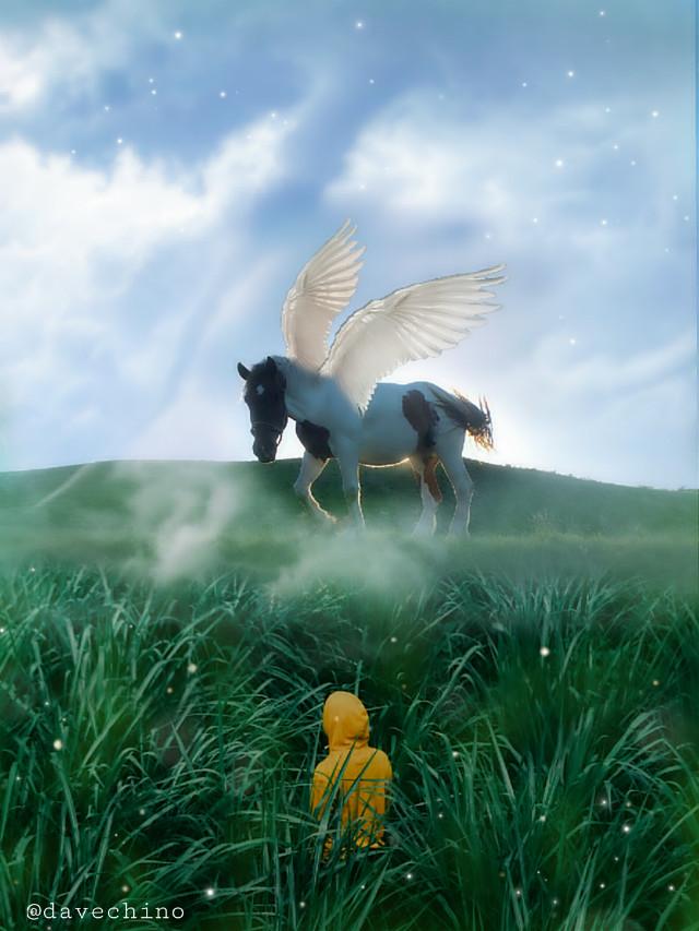 #horse #wings #hybird #nature #landscape #people #greengrass @freetoedit @picsart #surreal #surrealist #myedit