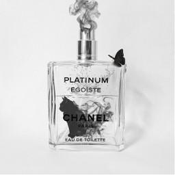 freetoedit perfume cat smoke butterfly