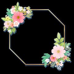 flowers frame ftestickers freetoedit