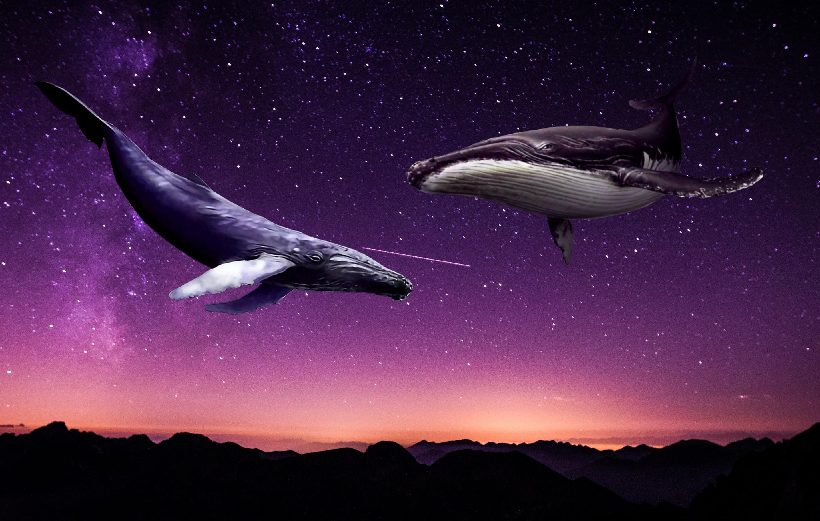 Широкоформатные картинки звездное небо первые