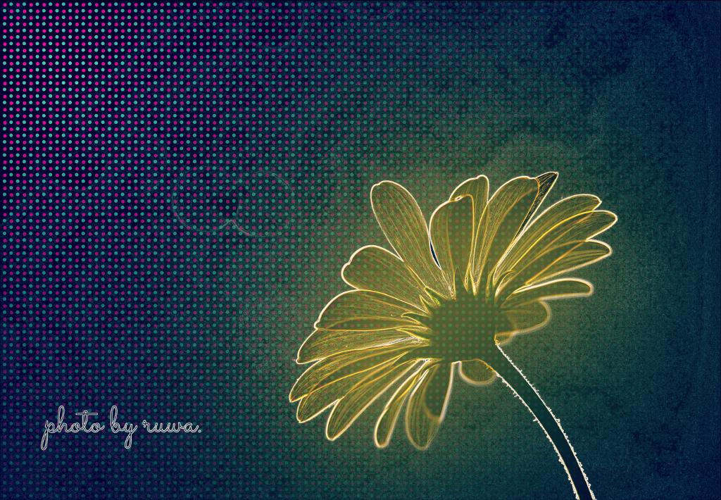 #freetoedit  #glow #nofeature #flower #neon
