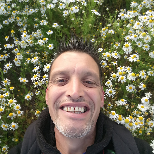 Just my lying down in a field of daisies #selfie #me #flower #daisy #field #outandabout