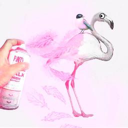 freetoedit flamingo cute comiceffect feathers