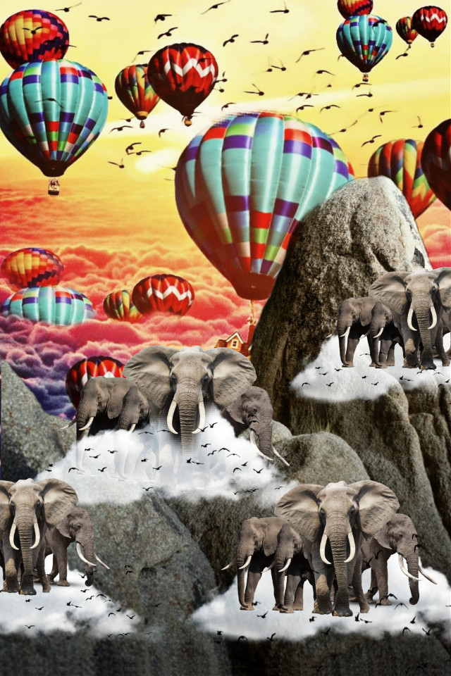 Still doing this mountain edit add elephants to the mix 🎈🎪🌄 Thank you for the stickers and pictures.  #madewithpicsart #remixwithpicsart #elephants #clouds #birds #hotairballoons #balloons #mountains #beautiful #magic #hdr #colorful
