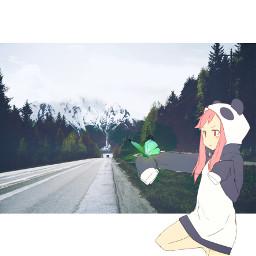 freetoedit anime nature way panda