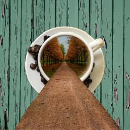 freetoedit coffe edit wood nature