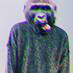 freetoedit humananimalhybrid glitch millennial3 glitcheffect