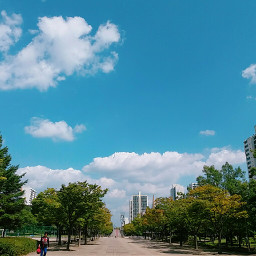 sky sunny_day saturday sunny