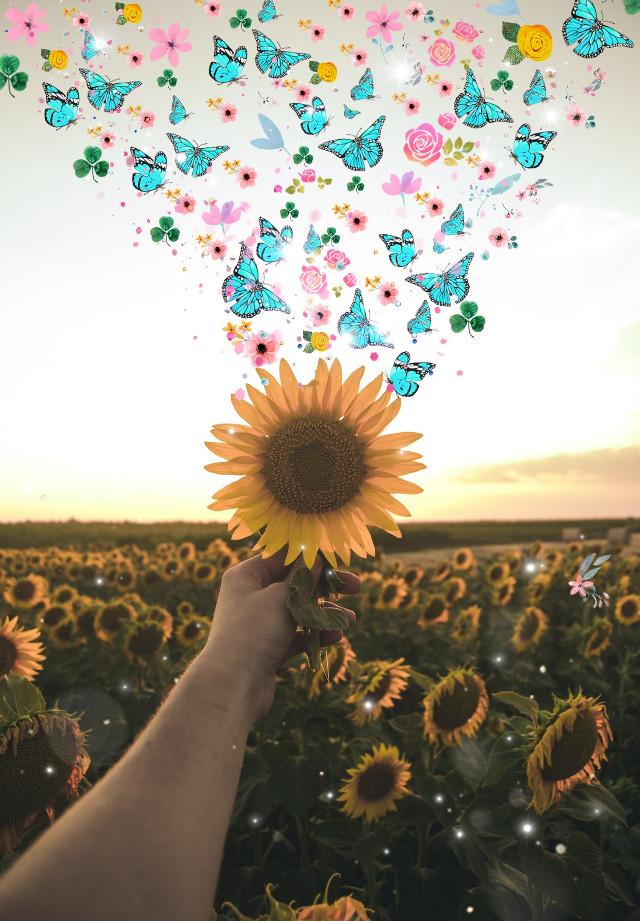 #freetoedit  #ecneweditorbrushes #neweditorbrushes #flowers