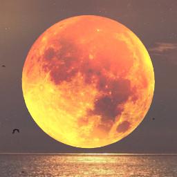 freetoedit bloodmoon moon sea reflection
