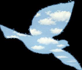 bird margritte renemagritte renémagritte colombe freetoedit
