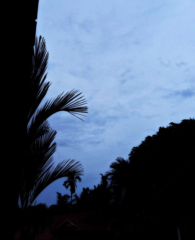 #cloud #sky #nature #beautiful #sun #star #home #house #editbyme #remixme #remixit #tree