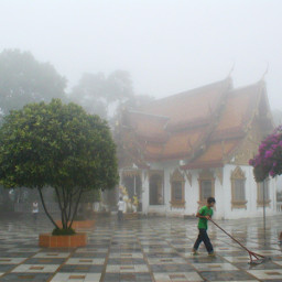 freetoedit cleanup temple monning fog pcmyfavphoto