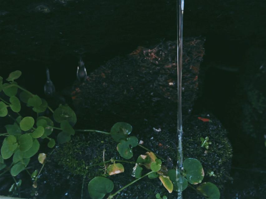 #freetoedit #waterdrops #waterfall #green #remixit