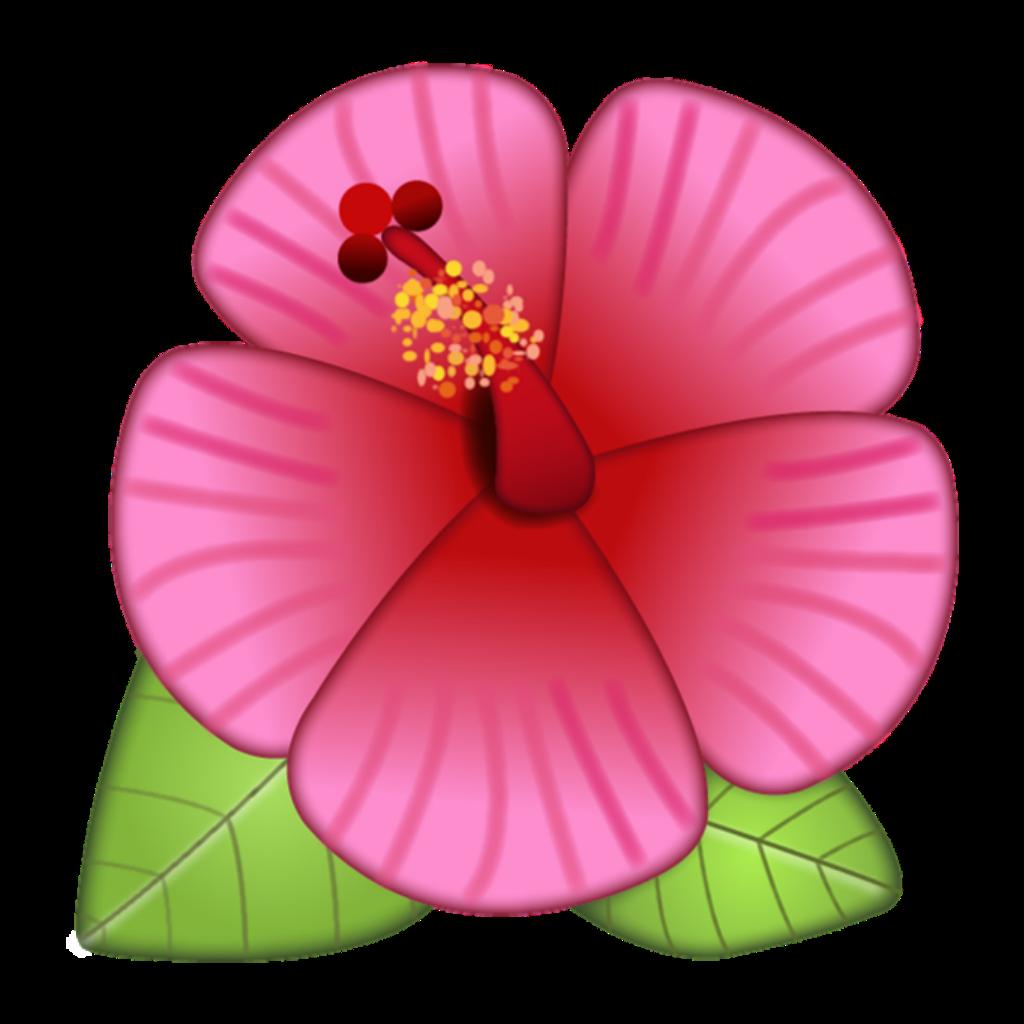 Fondo De Pantalla Whatsapp Emoji Flower