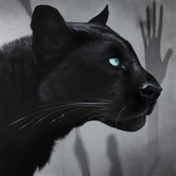 freetoedit background handsintheair panther black