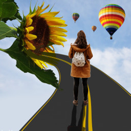 freetoedit road stickers sunflowerremix hotairballoon