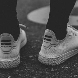 freetoedit shoes sneakers adidas adidasoriginals