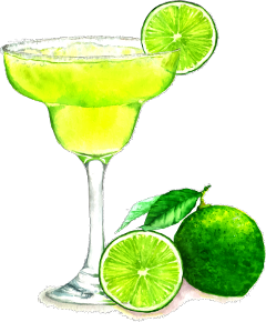 popular and trending margarita stickers on picsart