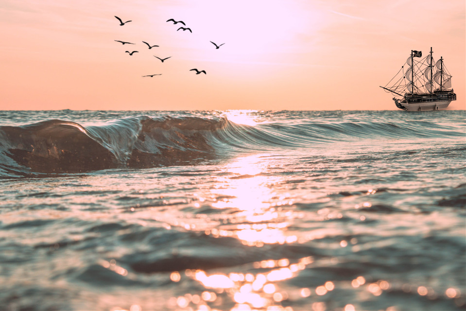 #freetoedit #boat #birds #picsartgivemethepremiumplease
