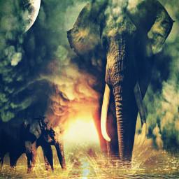 freetoedit myedit editremix elephant ircelephant