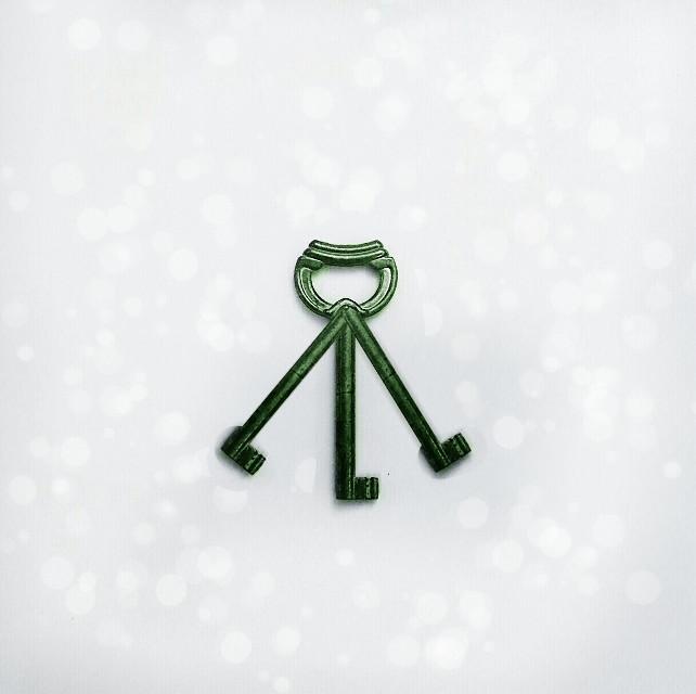 #freetoedit like inspired by a pendulum #key#pendulum#green#motionblur