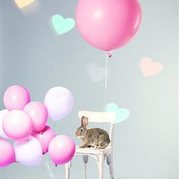 freetoedit ircpinkballoon pinkballoon