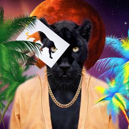 freetoedit srcpanther panther
