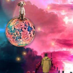 freetoedit planet galaxy ircdogday dogday