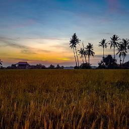 sunset landscape sun