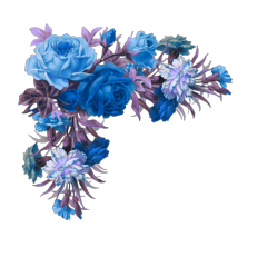 largest collection of free to edit flowers background tumblr