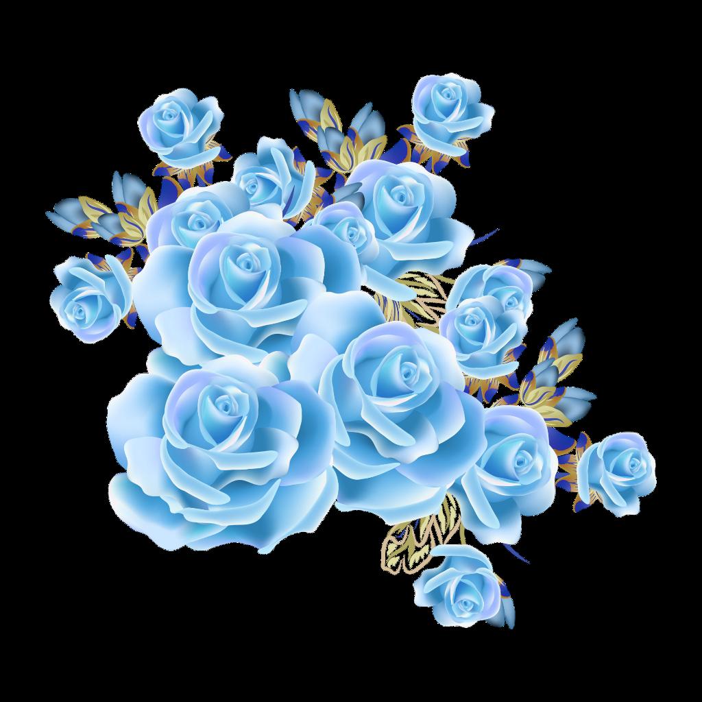 Mq Blue Rose Roses Flowers Flower